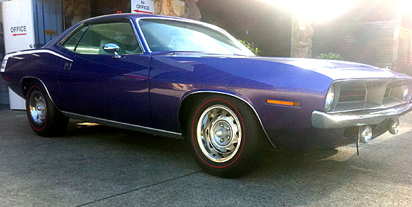 featured-purple-cuda